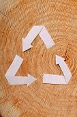 Close-up wooden cut and paper recycle symbol