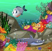 Illustration of lives underwater