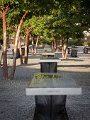 ARLINGTON, VA - SEPT 13, 2014: A line of granite and stainless steel memorial units among Crape Myrtle trees at the Pentagon Memorial. The benches have the name of each victim of the 2001 attack.