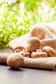 Fresh Brown Agaricus Mushrooms