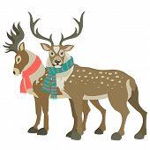Two cute reindeers