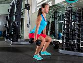 picture of squatting  - dumbbell squat woman workout exercise at gym - JPG