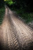 The Tracks In The Dirt Road