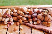 foto of shells  - Group tasty nuts in shell and shelled on a wooden table in the field - JPG