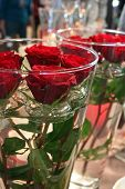 stock photo of flower vase  - decorative composition with roses in glass vases - JPG