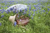 pic of bluebonnets  - An old brown leather suitcase with a straw bonnet and white parasol in a field of bluebonnets in the Texas Hill Country - JPG