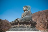 stock photo of seoraksan  - Buddha in the Sinheungsa Temple at Seoraksan National Park South Korea - JPG