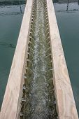 image of sedimentation  - Perforated launders water outlet in sedimentation tank - JPG