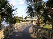 Winding walkway at the Manatee Sanctuary