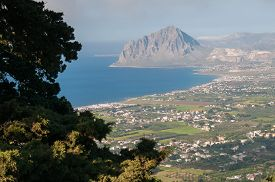 picture of promontory  - The promontory of Mount Cofano West Sicily seen from a viewpoint near Erice and a pine tree in the foreground - JPG