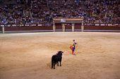 MADRID - el 8 de agosto: El torero Juan lucha contra un toro llamado Calabaza en el toro de Las Ventas