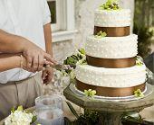 cutting wedding cake, focus on hands