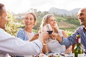 Happy friends raising their glasses in a toast  in a winery farm. Smiling mature woman and men enjoy poster