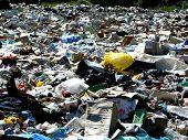 Greater Dump