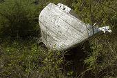 O casco resistiu de um veleiro abandonado situa-se na borda de uma floresta tropical.