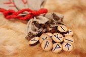 pic of thor  - Runes with pouch on the fur with copy space