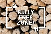Handwriting Text Writing Bully Free Zone. Concept Meaning Be Respectful To Other Bullying Is Not All poster