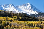 Early Autumn Snow Covers A Rugged Mountain Range In Southwestern Colorado. Aspen Groves With The Cha poster