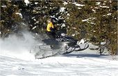 Snowmobile Girl