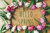 Hello Spring Text Sign On Beautiful Double Peony Tulips Frame Flat Lay On Wooden Table. Springtime. poster