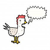 squawking chicken cartoon