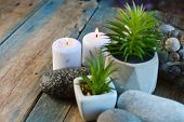 Home Decor And Plants. Succulents, Candles Decor On A Wooden Table. poster