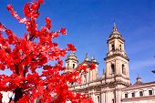 stock photo of bolivar  - Cathedral of Bogota - JPG
