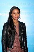 LOS ANGELES - JAN 6:  Joy Bryant arrives at the NBC Universal All-Star Winter TCA Party at The Athen