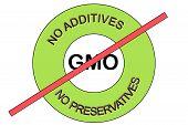 Illustration Of A Green No Gmo Non Gmo No Preservatives No Additives Stamp Seal poster