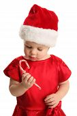 Young Child Holding And Looking At A Candy Cane