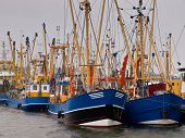 Dutch Fishing Fleet Lauwersoog