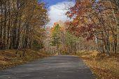 Autumn Road , Mille Lacs State Park