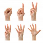 image of hand gesture  - Counting woman hands  - JPG
