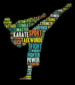 Concepto de artes marciales