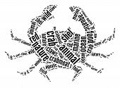 Crab and sea-life concept