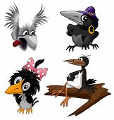 Cartoon birds crow and magpie set