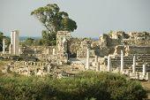Salamis Soman Ruins