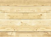 picture of section  - wood texture - JPG