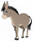 stock photo of donkey  - Donkey theme image 1  - JPG