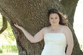 Tree-Hugging Bride