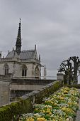 Garden of Chateau Amboise
