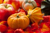 Traditional pumpkins for Halloween in warm colors
