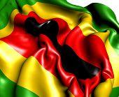 Zimbabwe African National Union Flag
