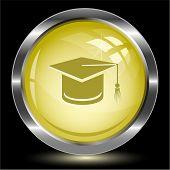 Graduation cap. Internet button. Raster illustration.