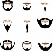 picture of goatee  - Beard and facial hair styles in vector silhouette - JPG