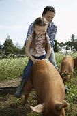 Smiling father helping daughter to ride pig in sty against the sky