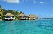 Luxury Thatched Roof Honeymoon Bungalows