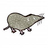 retro cartoon shrew