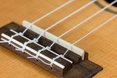 Closeup Of Ukulele Hawaiian Guitar