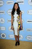 Naomi Harris at the 6th Annual Essence Black Women in Hollywood Luncheon, Beverly Hills Hotel, Beverly Hills, C A 02-21-13
